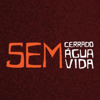 Le collectif Sans Cerrado, pas d'eau, pas de vie comprend notamment ActionAid Brésil et plusieurs organisations avec lesquelles ActionAid France travaille depuis des années...